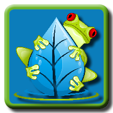 Swamp App